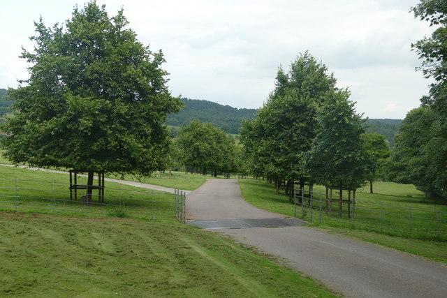 Driveway to Cote Farm