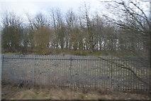 SE3634 : In a cutting near Cross Gates Station by N Chadwick