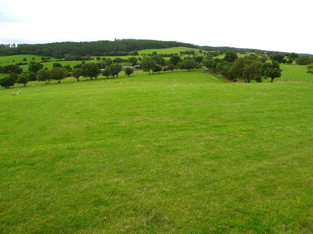 Grazing land surrounding Cae'r hafod-ucha