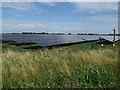 TL5170 : Solar farm near Chittering by Hugh Venables