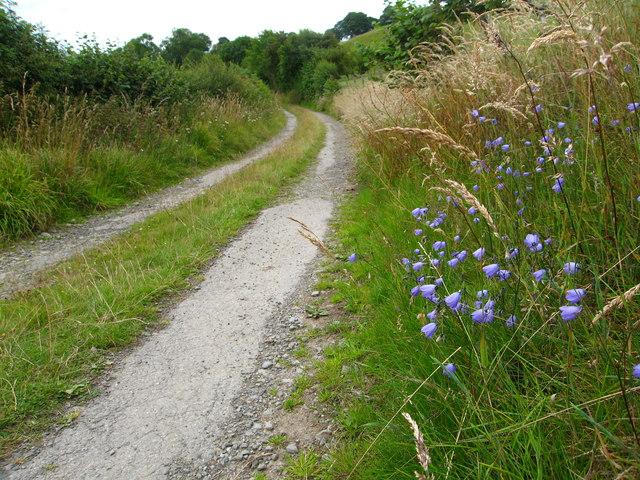 Little used minor lane near Garreg-y-gath