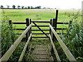 TF0701 : Footbridge over White Water Brook by Richard Humphrey