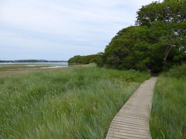 Boardwalk for New Lipchis Way