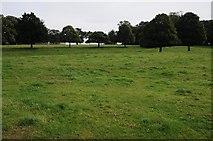TF8825 : Raynham Park by Philip Halling