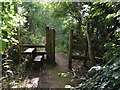 TF1506 : Wooden stile near Glinton by Paul Bryan
