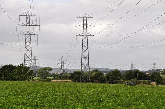 East Devon : Grassy Field & Pylons