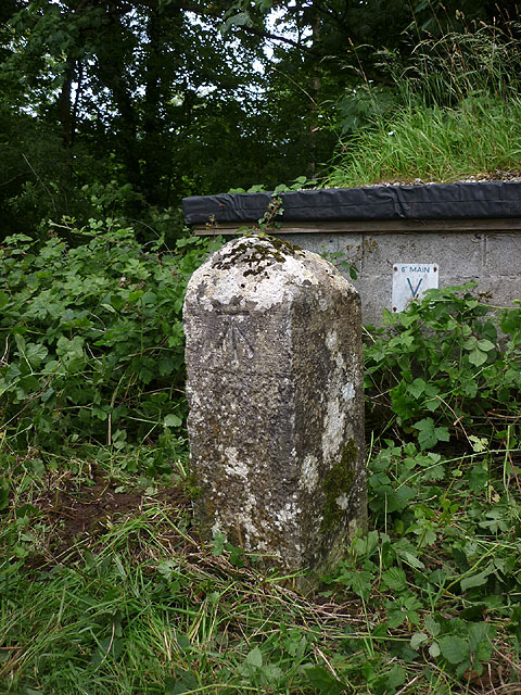 Boundary stone with bench mark, Storrs Lane