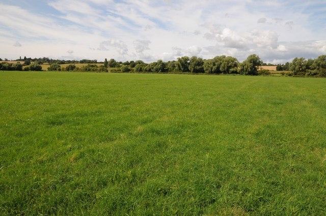 Meadow beside the River Avon