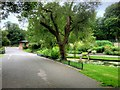 SJ3787 : Sefton Park, Liverpool by David Dixon