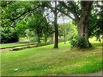 SJ3787 : Sefton Park, Lower Jordan by David Dixon