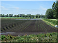 TL5371 : Irrigation on Fidwell Fen by Hugh Venables