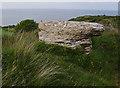 SH5881 : Limestone boulder, Bwrdd Arthur by Ian Taylor