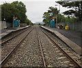 SN5601 : Through Llangennech railway station  by Jaggery