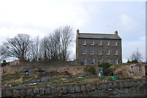 NU0052 : Lion House and Allotments at Berwick-upon-Tweed by cathietinn