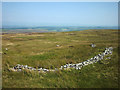 NY4620 : Short length of ruined wall, Arthur's Pike by Karl and Ali