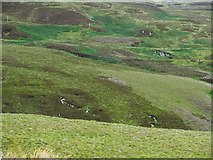 NR6107 : Moorland and road on the Mull of Kintyre by wrobison