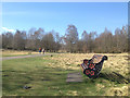SP1096 : Incongruous but comfy – sunny seat in Sutton Park by Robin Stott