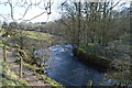 SD9059 : River Aire by N Chadwick