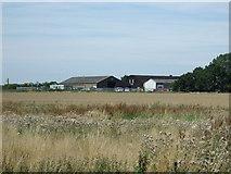 TL0536 : Crop field towards Brookside Farm by JThomas