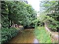 S1388 : Bunnow River, Roscrea by Jonathan Thacker