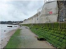 SX9777 : The new sea wall at Dawlish by David Smith