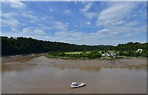 ST5394 : Chepstow Castle: The river Wye from the middle bailey by Michael Garlick