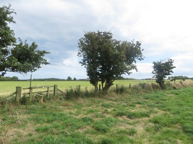 Stile between two grass fields