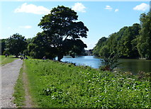 TQ1773 : The Thames Path near Petersham by Mat Fascione