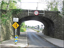 N1838 : Low bridge at Cartron Keel, Moate by Colin Park