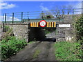 N1773 : Low bridge at Cooleeny, Co Longford by Colin Park