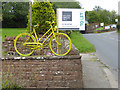 NY5733 : The yellow bikes of Langwathby (17) by Oliver Dixon