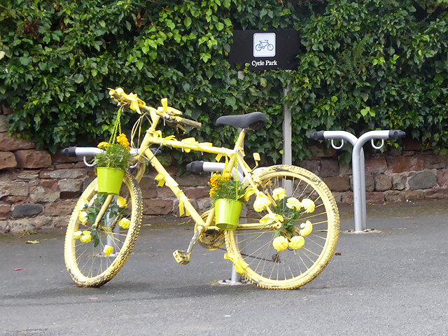 The yellow bikes of Melmerby (18)