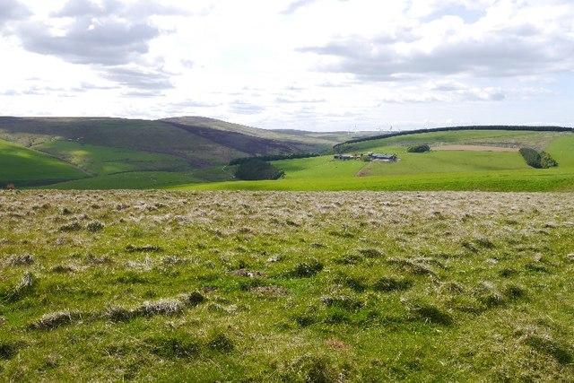 Rough grazing, Crichness Hill