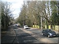 SU6772 : The Bath Road fringed by trees, Calcot, Reading by Robin Stott