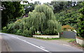SO3700 : Weeping willow, Usk by Jaggery