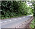 SO3700 : No overtaking on the road to Usk, Llanbadoc by Jaggery