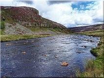 NY8228 : River Tees by Mick Garratt