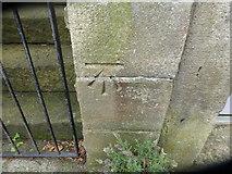 SD9927 : Cut Mark 14 Birchcliffe Hebden Bridge by Monica Stagg