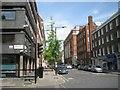 TQ2781 : Ginkgo as a street tree, Seymour Place, Marylebone, London W1 by Robin Stott