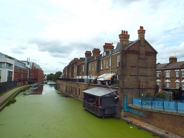 Algae on the Grand Union Canal at Kensal Town
