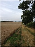 SP7389 : Footpath close to Great Bowden by Dave Thompson
