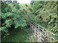 NY7164 : Footbridge south of Oakey Knowe by Andrew Curtis