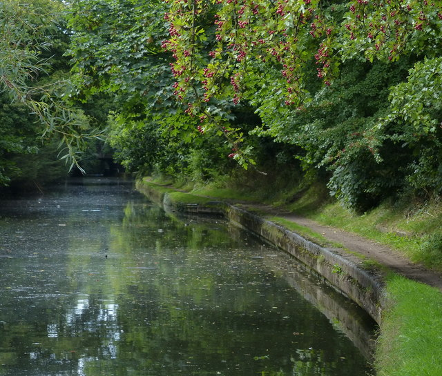 Grand Union Canal in South Yardley