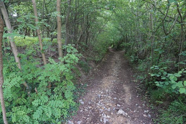 Path down to Cheltenham