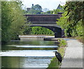SP1184 : Heron on the towpath of the Grand Union Canal by Mat Fascione