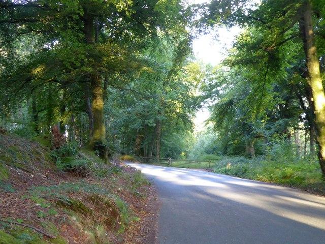 Closed roadway near Ashcombe