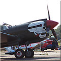 TM3195 : Curtiss P-40M Kittyhawk fighter aircraft (detail) by Evelyn Simak