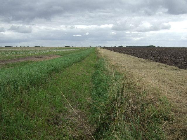 Drain off Thorpe Tilney Drove