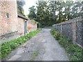 TQ6668 : Track off The Street, Cobham by David Howard