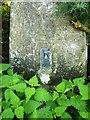 SD0897 : OS flush bracket S5765, Cumblands trig by Richard Law